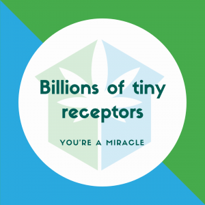 Billions of tiny receptors